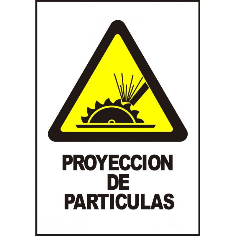 Cartel Proyección de Partículas